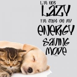 Vinilos frases inglés I´m not lazy just on my energy saving mode